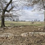 POLK COUNTY LAND AUCTION    202 ACRES