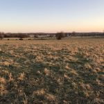 ABSOLUTE POLK COUNTY LAND AUCTION
